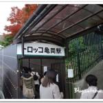 京都嵯峨野觀光小火車