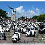 [南投竹山] 紙熊貓展 快閃竹山文化園區