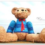 [台中南屯] 迷失小熊~ 台中地景藝術節 Taichung Land Art Festival