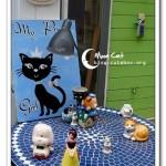 [台中東海] 月亮與貓 Moon&Cat