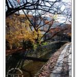 [京都] 哲學之道~日本極為知名的賞櫻名所