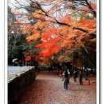 京都南禪寺、蹴上傾斜鐵道