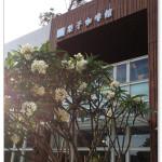 [台中親子餐廳] 梨子咖啡館 崇德店~處處都有小驚喜