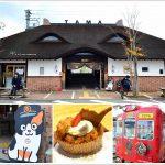 日本關西京阪神七天六夜親子自由行建議行程