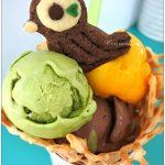 [台中西區] 巢健康手作坊~ 限量鳥巢冰淇淋好可愛好吸睛