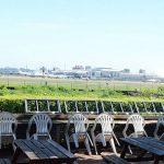 [高雄小港] 淨園機場咖啡休閒農場~ 看飛機遊農場,親子同遊好地方
