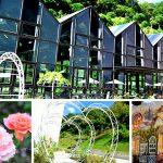 [苗栗頭屋] 雅聞七里香玫瑰森林觀光工廠~ 玻璃屋及歐式花園好吸睛,參觀免門票