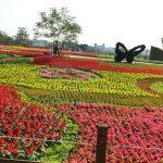 [台中后里] 2016臺中國際花毯節~ 宛如走入童話般的立體花卉樂園
