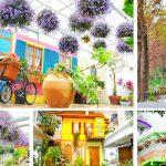 [彰化田尾] 菁芳園Tenway Cafe~ 紫色夢幻海豚花好浪漫,拍照下午茶好去處!