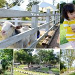 [苗栗卓蘭] Vilavilla魔法莊園~ 童話森林樹屋及大沙坑積木,親子同遊好玩有趣